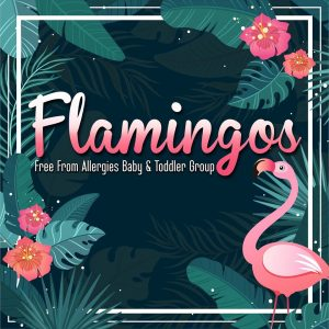 Playgroup called Flamingos